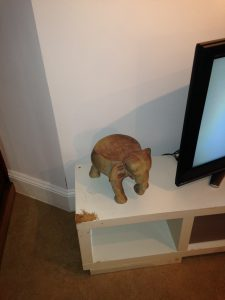 Chewed TV stand
