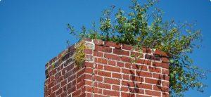 homeguides-articles-thumbs-dangers_of_blocked_chimneys.jpg.600x275_q85_crop